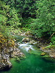 Little Qualicum River on Vancouver Island, Canada