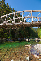 Opal Creek Recreation Area, Little NorthFork Santiam River and Shady Cove Campground in the Willamette National Forest