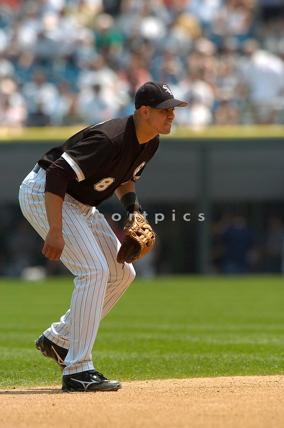 Alex Cintron, of the Chicago White Sox, during thier game against the Boston Red Sox  on July 9, 2006 in Chicago...White Sox win 9-6..David Durochik / SportPics