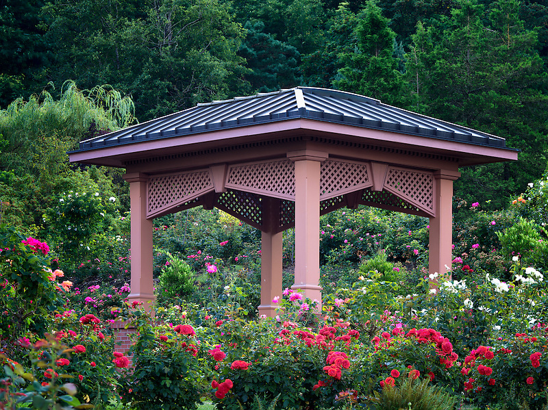 Gazebo in Portland Rose Test Garden. Orefgon