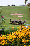 Three Fox Vineyards has numerous picnic and dining areas on the lawns around the property.