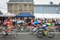 peloton.<br /> <br /> 71th Halle Ingooigem 2018 (1.1)<br /> 1 Day Race: Halle &gt; Ingooigem (197.7km)