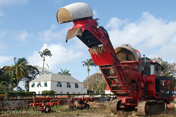 Barbados - Society Plantation cane harvester and plantation house