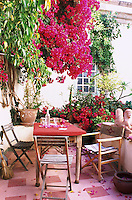Interior designer, Christophe Gollut, has joined together three town houses in Las Palmas to make one.  The resulting inner courtyard has become a garden filled with pink bougainvillea, jasmine and succulents