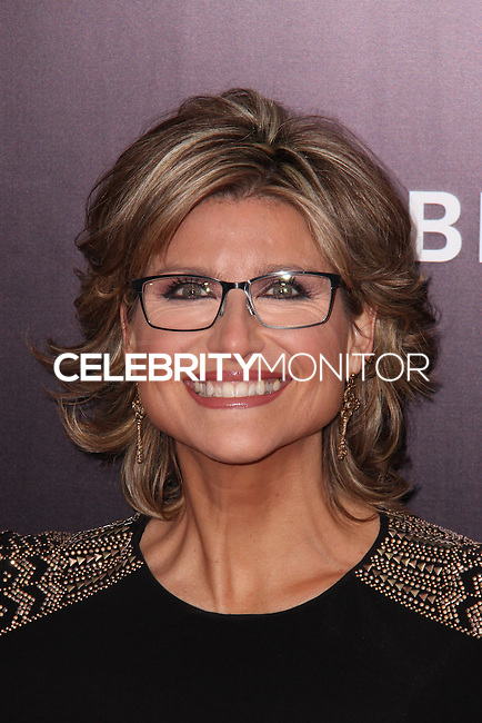 """NEW YORK, NY - FEBRUARY 04: Ashleigh Banfield at the New York Premiere Of Columbia Pictures' """"The Monuments Men"""" held at Ziegfeld Theater on February 4, 2014 in New York City, New York. (Photo by Jeffery Duran/Celebrity Monitor)"""