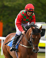 Bayards Cove ridden by Sarah Bowen goes down to the start of The Gift Of Sight Handicap during Evening Racing at Salisbury Racecourse on 3rd September 2019