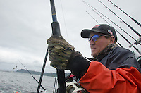 An angler battles a 90-pound halibut off Montague Island in the Gulf of Alaska during a June 2011 charter.