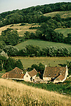 'WINE IN ENGLAND, SOMERSET', NORTH WOOTTON VINEYARD & HOME OF MAJOR GILLISPIE, IN SHELTERED VALLEY A FEW MILES WEST OF CATHEDRAL CITY OF WELLS, 1989