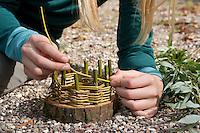 Mädchen, Kind baut ein Osternest aus Baumscheibe, Weidenästchen, Moos, Gänseblümchen und bunten Ostereiern; 3. Schritt: Zwischen die senkrechten Ästchen werden biegsame Weidenästchen geflochten