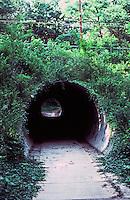 Greenbelt:  Pedestrian Underpass.  Lush setting.  Photo '85.