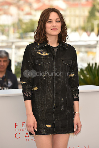 Marion Cotillard  at 'Mal Pierres' photocall during 69th International Cannes Film Festival, France<br /> May 2010<br /> CAP/PL<br /> &copy;Phil Loftus/Capital Pictures /MediaPunch ***NORTH AND SOUTH AMERICA ONLY***