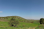 Israel, the Shephelah. Rolling hills near Amatzia