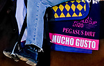 January 22, 2020: Mucho Gusto stretches his legs and jogs as horses prepare for the Pegasus World Cup Invitational at Gulfstream Park Race Track in Hallandale Beach, Florida. Scott Serio/Eclipse Sportswire/CSM