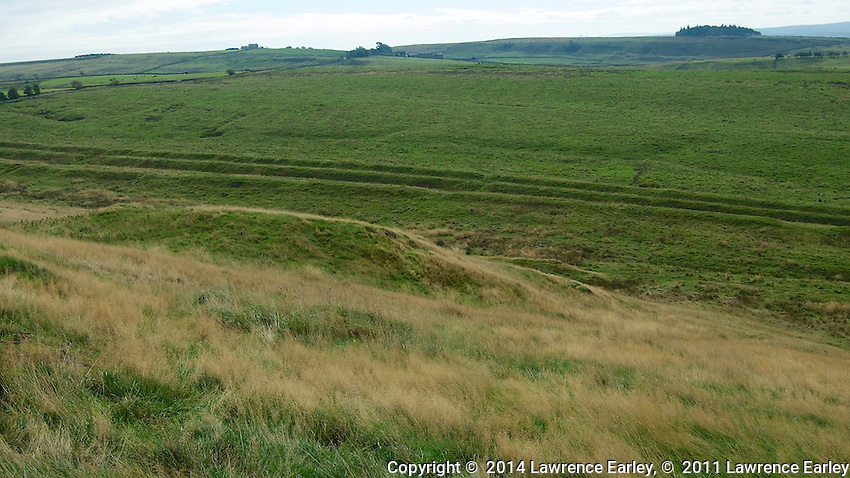 Day 3 - Roman vallum on southern side of wall.