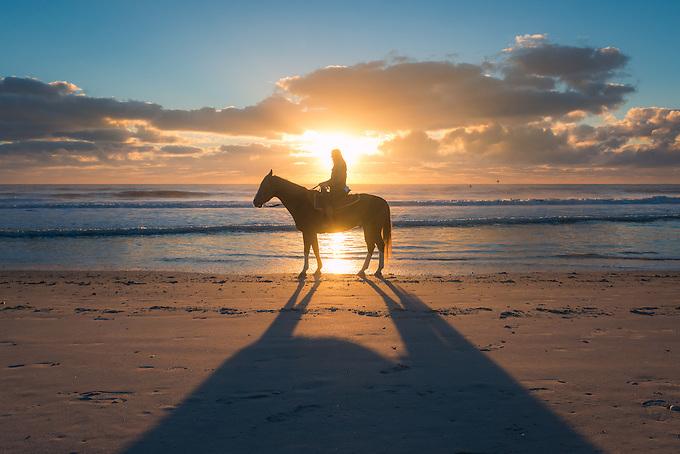 Horseback riding on the beach of Amelia Island, Florida.