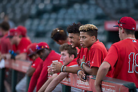 AZL Angels outfielder Jordyn Adams (21) in the dugout with his teammates during an Arizona League game against the AZL Indians 2 at Tempe Diablo Stadium on June 30, 2018 in Tempe, Arizona. The AZL Indians 2 defeated the AZL Angels by a score of 13-8. (Zachary Lucy/Four Seam Images)