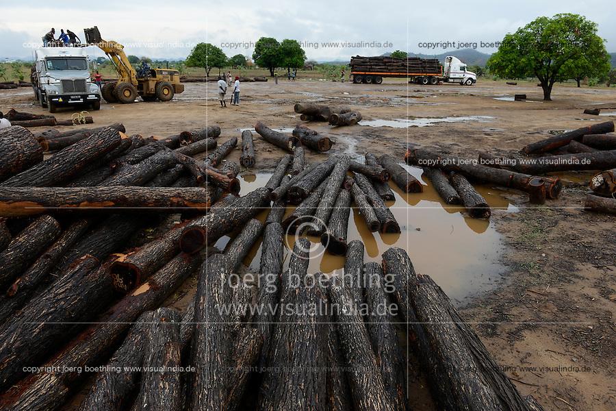 MOZAMBIQUE, Beira Corridor, timber trade of chinese companies for export to China, loading and truck transport of logged trees from Tete province to harbor Beira / MOSAMBIK, Beira Korridor, Holzhandel von chinesischen Firmen fuer Export nach China, Verladung und LKW Transport von Baumstaemmen aus der Provinz Tete zum Hafen Beira, Kahlschlag in Mosambik, taeglich kommen hunderte Lastwagen mit Holz in Beira an