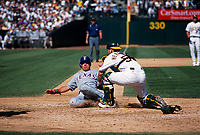 OAKLAND, CA - Ramon Hernandez of the Oakland Athletics tags out Texas Rangers base runner Mike Lamb at home plate during their game at the Oakland Coliseum in Oakland, California on October 1, 2000. (Photo by Brad Mangin)