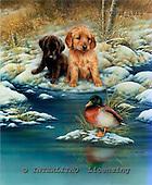 GIORDANO, CHRISTMAS ANIMALS, WEIHNACHTEN TIERE, NAVIDAD ANIMALES, paintings+++++,USGI1813,#XA#