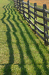 Fence shadows on grass Commonwealth of Virginia, Fine Art Photography by Ron Bennett, Fine Art, Fine Art photography, Art Photography, Copyright RonBennettPhotography.com ©