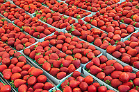 Strawberries, Fresh Fruit, Vegetables, Produce, Farmers Market, Farm-fresh produce, fruits,
