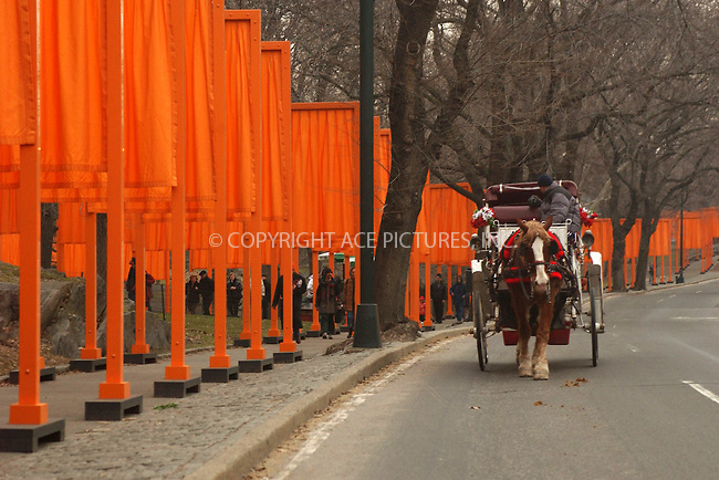 WWW.ACEPIXS.COM . . . . . ....NEW YORK, FEBRUARY 23, 2005....Christo and Jeanne-Claudes' art installation 'The Gates' in Central Park.....Please byline: KRISTIN CALLAHAN - ACE PICTURES.. . . . . . ..Ace Pictures, Inc:  ..Philip Vaughan (646) 769-0430..e-mail: info@acepixs.com..web: http://www.acepixs.com