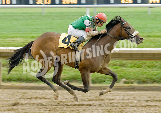 True Feelings winning at Delaware Park on 6/27/11