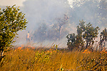 Controlled burning of savanna, Kafue National Park, Zambia