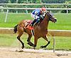 Virginia Ann winning at Delaware Park racetrack on 6/18/14
