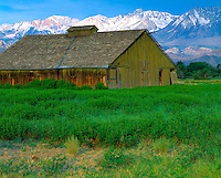 Old Barn & the Sierra Nevada, Owens Valley, California