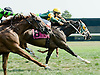 Arrow Lake winning at Delaware Park on 8/31/10