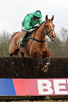 Chasers Chance ridden by Tom O'Brien in jumping action in the Tim Barclay Memorial Handicap Chase