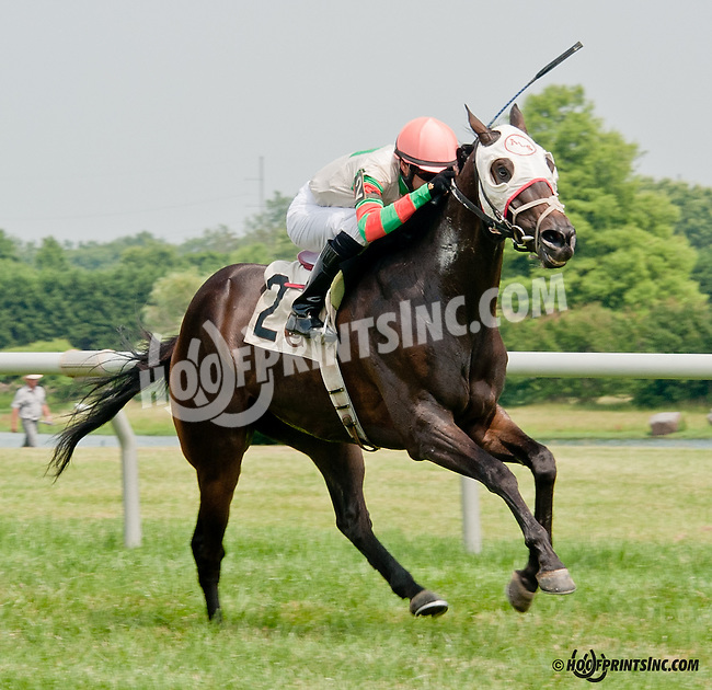 Momma's Happy winning at Delaware Park on 6/26/13