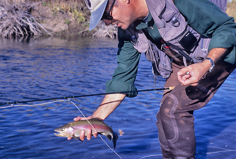 Fly fisherman releasing trout on Donner and Blitzen River; Oregon