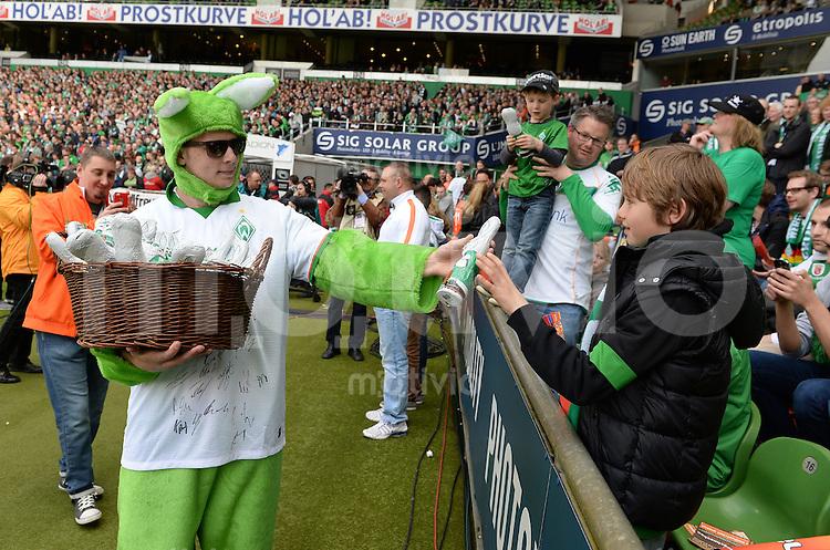 FUSSBALL   1. BUNDESLIGA   SAISON 2013/2014   31. SPIELTAG SV Werder Bremen - 1899 Hoffenhein                   19.04.2014 Ein offensichtlich als Osterhase verkleideter Mensch verteil Schokohasen an die Fans