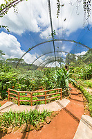 La Paz waterfall, hummingbird and butterfly farm, Cost Rica, Central America