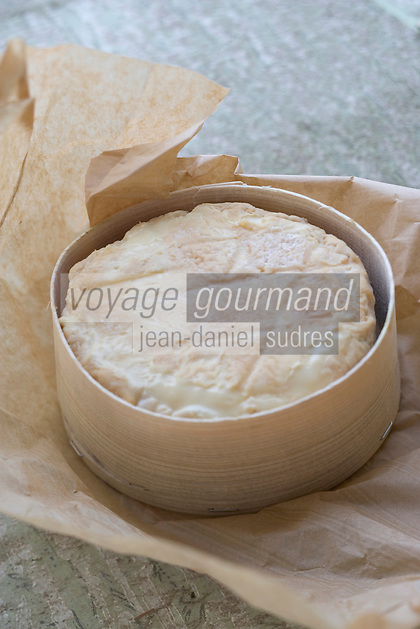 Europe/France/Bourgogne/89/Yonne/Soumaintrain: Fromage Soumaintrain fermier