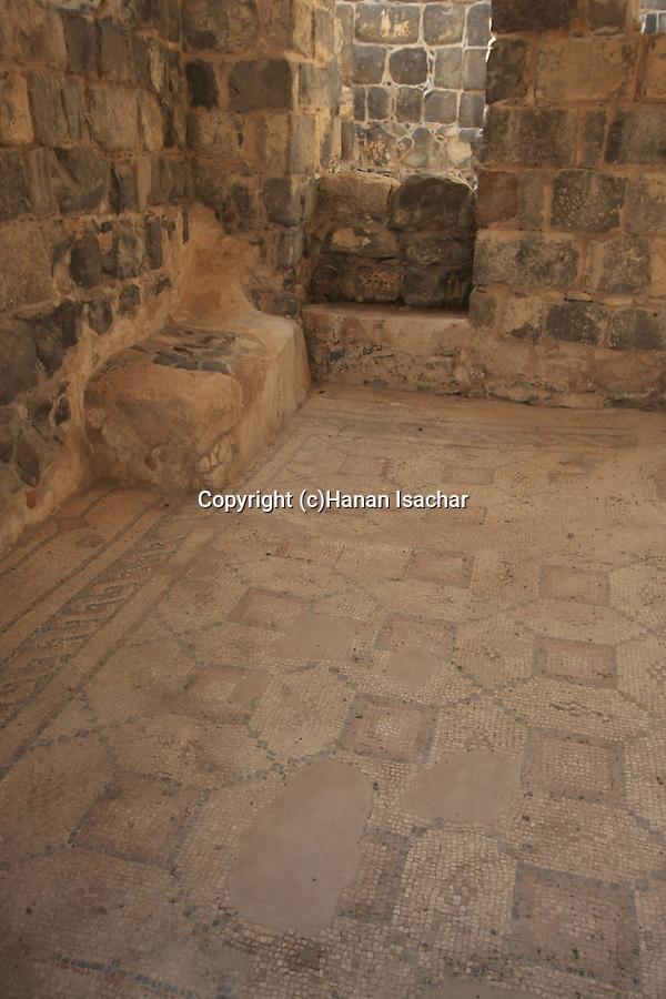 Israel, Beth Shean. A mosaic floor at the Byzantine Sygma
