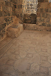 Israel, Beth Shean. A mosaic floor at the Byzantine Sygma