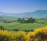 Italy, Tuscany, near San Quirico d'Orcia: Tuscan Countryside | Italien, Toskana, bei San Quirico d'Orcia: typisch toskanische Landschaft
