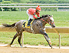 Nice Going winning at Delaware Park on 5/28/12