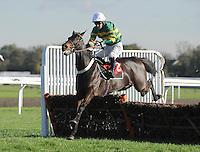 Horse Racing 2013-11