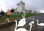 03-01-12: Hanna Herlihy (7), Castleisland, Co. Kerry, feeding the swans at  Ross Castle, Killarney on Tuesday.  Picture: Eamonn Keogh (MacMonagle, Killarney)