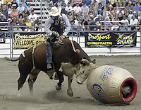 Bull Riding Pro Rodeo