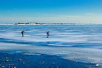 Två män åker långfärdsskridsko vid havet utanför Torö med Landsort i bakgrunden.