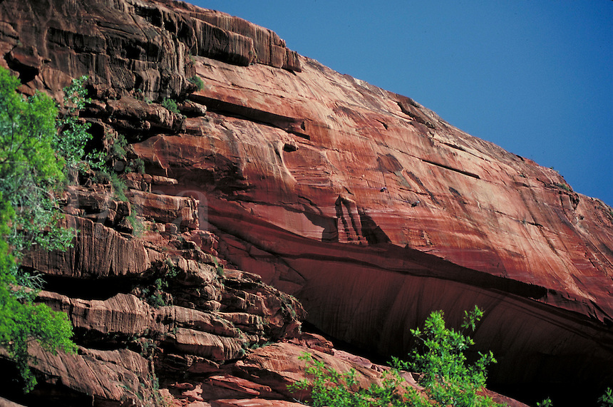 Sheer sandstone rockface framed by foliage, vegitation, geology. Utah, Zion National Park.