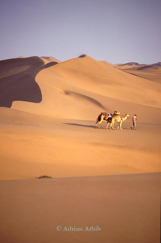 Benedict Allen on his journey through the Namib desert, Skeleton Coast, Namibia