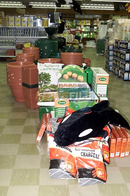Qmart gardening 1.Picture Fran Caffrey Newsfile