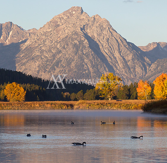 The classic autumn vista at Oxbow Bend.