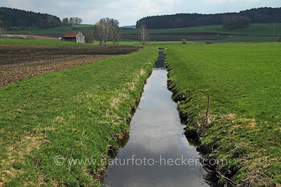Begradigter Bach, Begradigung, Bachbegradigung, Flussbegradigung, Naturzerstörung. Straightening, straightened river, stream, regulated river